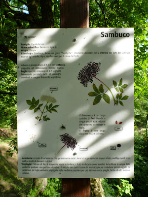 Example of Sign about Trees in the Reserve