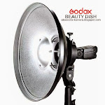 BEAUTY DISH