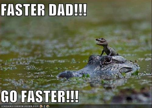 free funny photoS: funny crocodiles