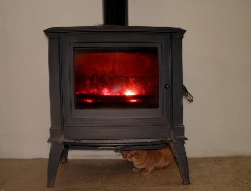 Verde y cordial al calor de la estufa - Estufa de calor ...