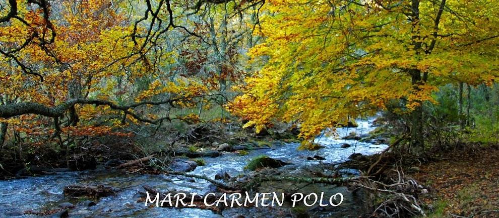 Mari Carmen Polo