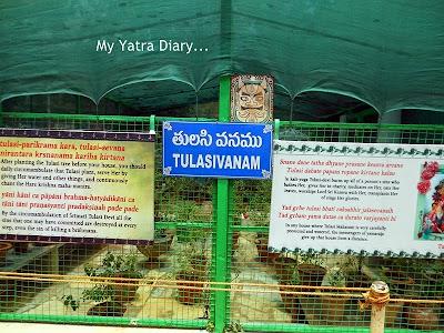 ISKCON Tirupati Temple Tulsi Baug, Andhra Pradesh