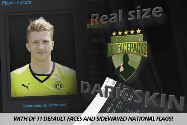 DF11 Football Manager 2014 Real Size Dark Skin