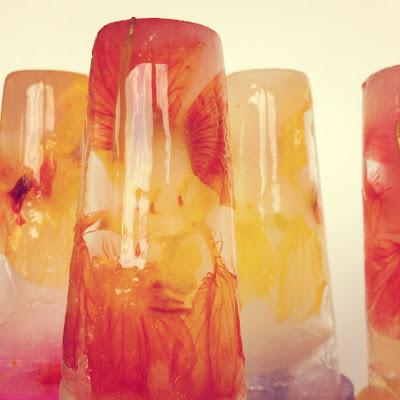 Zelf ijsjes ijslollys maken met echte bloemen Oost-Indische kers eten - Icepops with flowers DIY