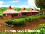 Rumah Kayu Kelapa Rancabali