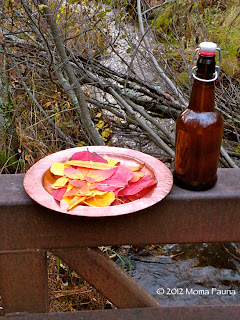 Autumn Equinox: Leaves & libations.