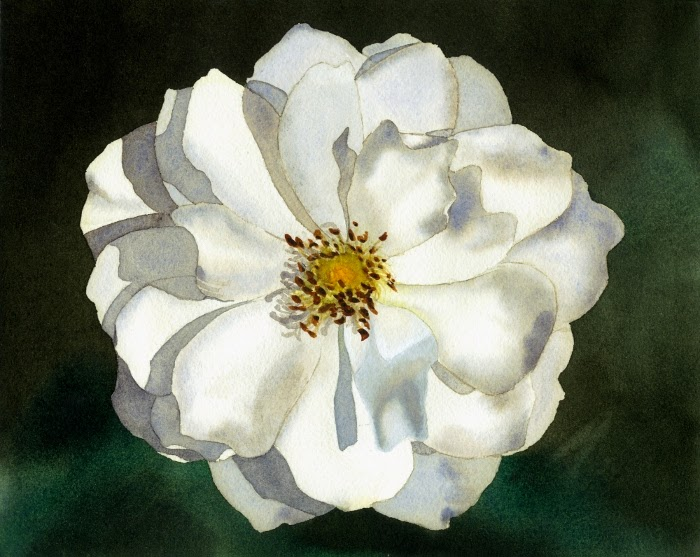 https://www.etsy.com/listing/177680251/blooming-white-rose-original-watercolor?ref=shop_home_active_1