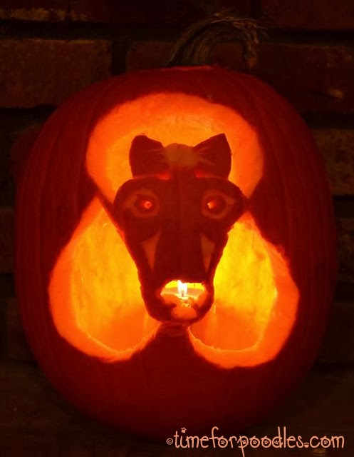 Poodle Pumpkin Carving For Carving Pumpkins to