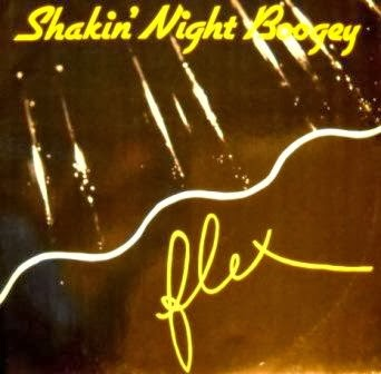 FLEX – Shakin' Night Boogey (1985)