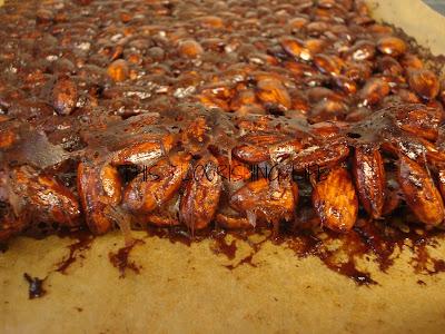 Paleo Chocolate Cinnamon Almond Brittle