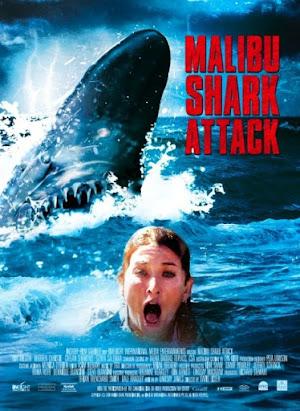 Malibu Shark Attack Film