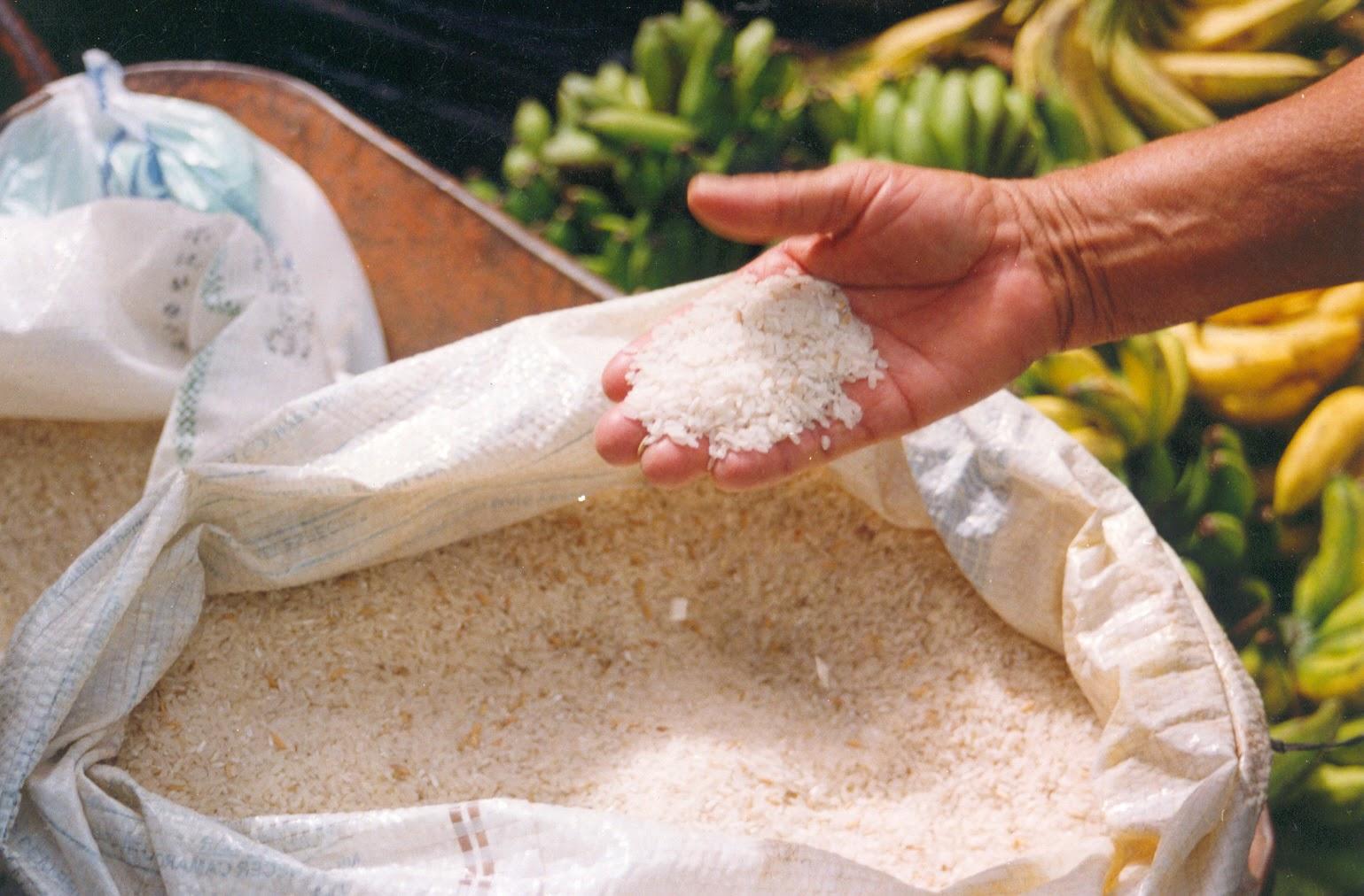 Farinha de Feijão Branco emagrece e traz vários outros benefícios