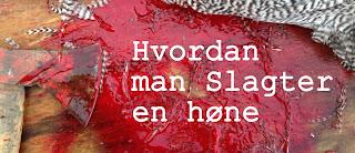 http://kolonihavelivet.blogspot.dk/2015/10/om-hvordan-man-slagter-en-hne.html