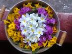Caldeirão de flores