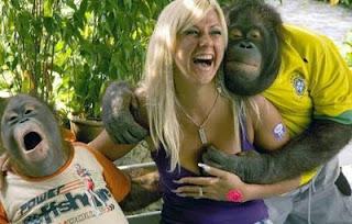 Bad Gorilla
