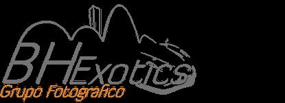BH Exotics