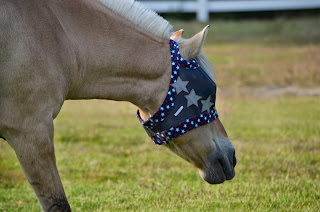 Colorful Equine Custom Fly Masks