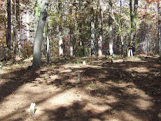 Lathan-Edmonds Cemetery