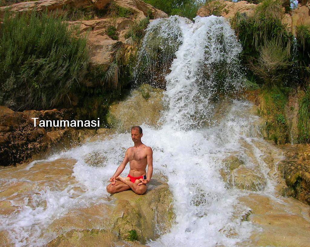 Yoga para principiantes como practicar meditacion en casa - Hacer meditacion en casa ...