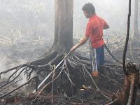 Aksi Pahlawan Muda Melawan Asap dan Kebakaran Hutan
