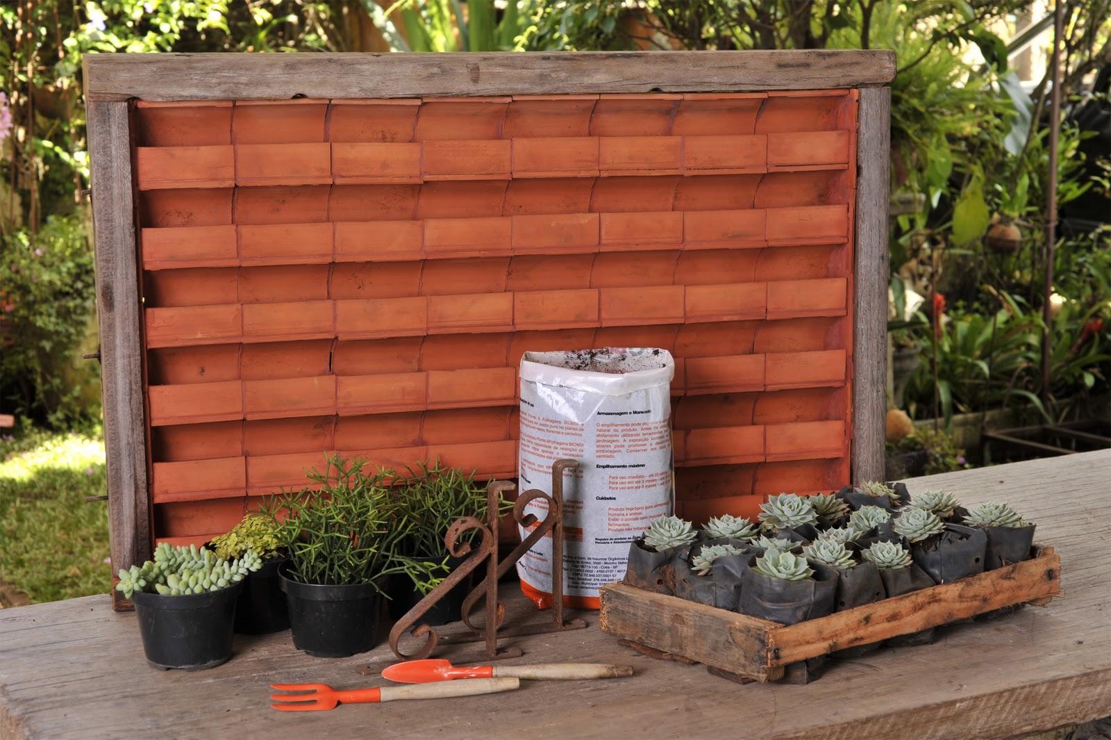 Vá plantando com substrato e mudas das suculentas alternadamente #9C462F 1600x1065