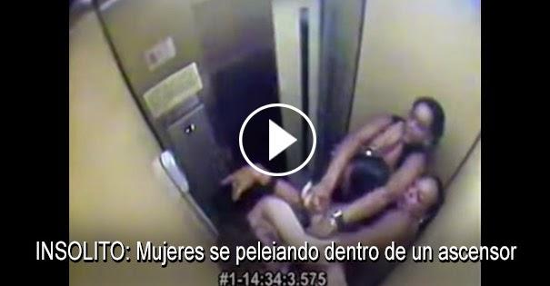 PELEAS CALLEJERAS:Mujeres se peleiando dentro de un ascensor
