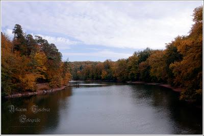 Der Bärensee Stuttgart im Herbst