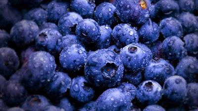 10 Makanan Yang Harusnya Kamu Makan Setiap Hari