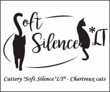 Soft Silence