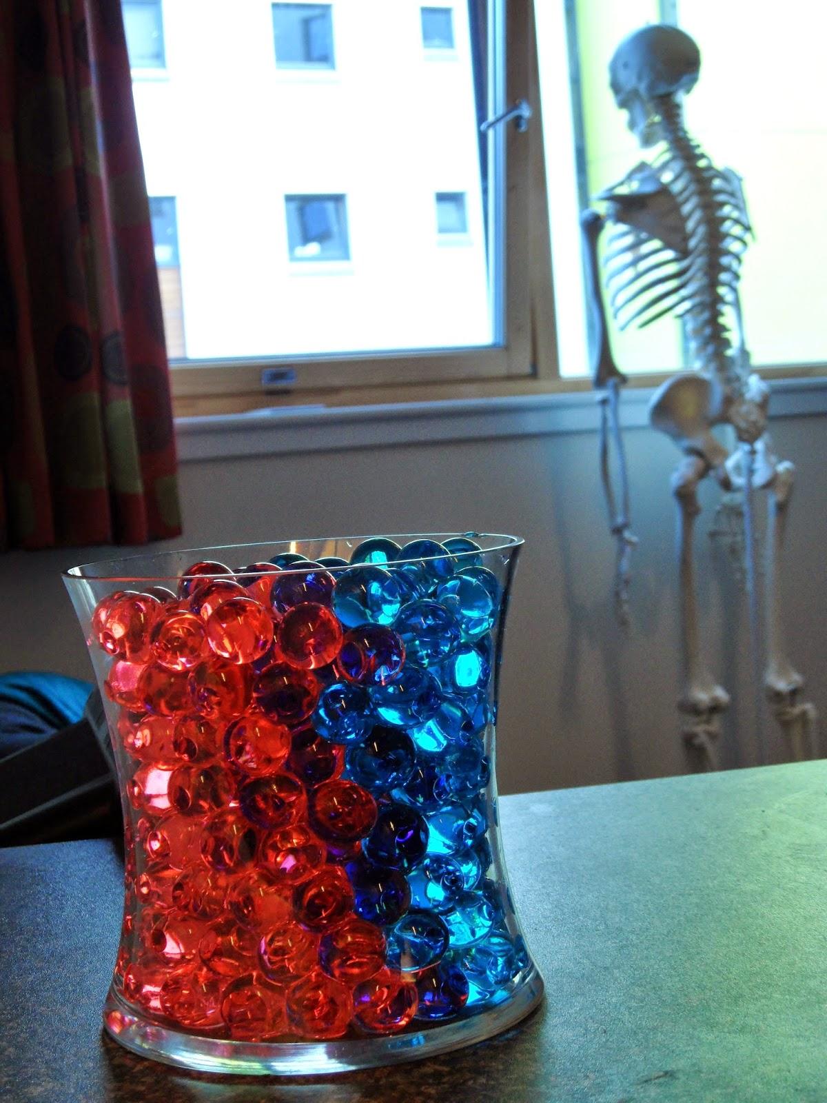 Ben Thompson red and blue bio gel spider plant vase skeleton