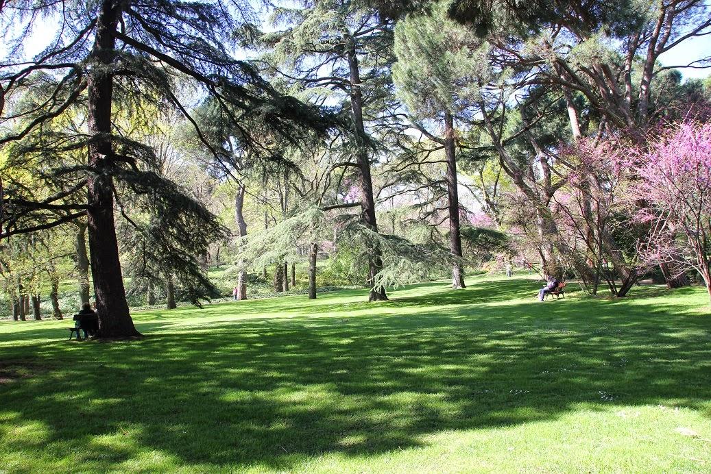 Suddenly marta parque el capricho un lugar con mucho encanto for Charcas de jardin
