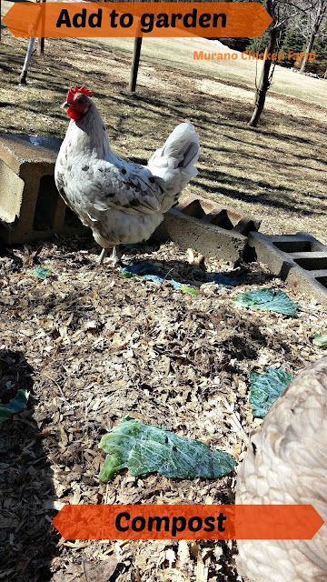 add chicken coop litter to the compost pile