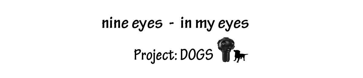 nine eyes - in my eyes project: dogs