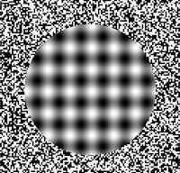 Brain Illusions1