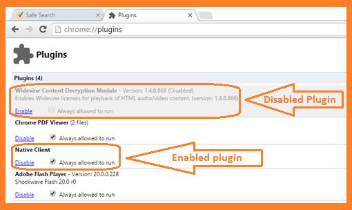 Chrome Pluggins