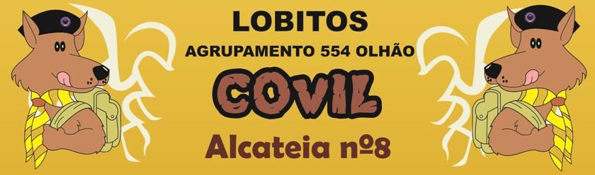 Lobitos Agrupamento 554 Olhão