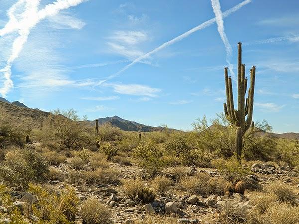 Scottsdale's Sonoran Desert, Style Jaunt by Katarina Kovacevic