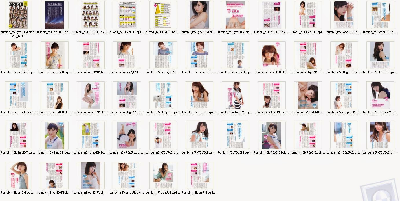 akb48 general election official guide book 2014 rh nghty48 blogspot com