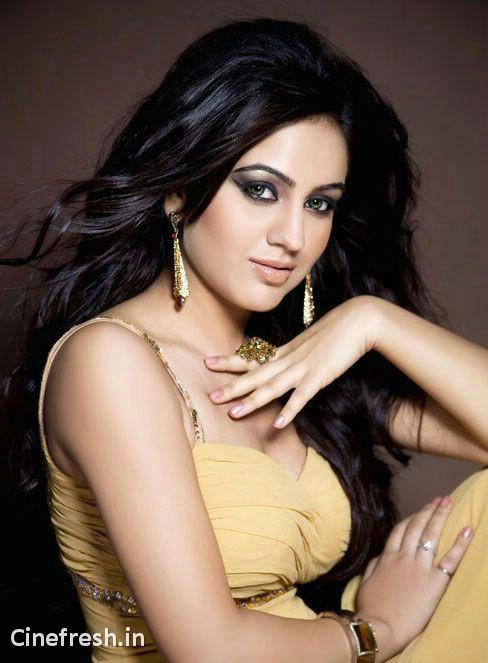 Aksha Hot Stylish Stills Actress Aksha Hot Photos sexy stills