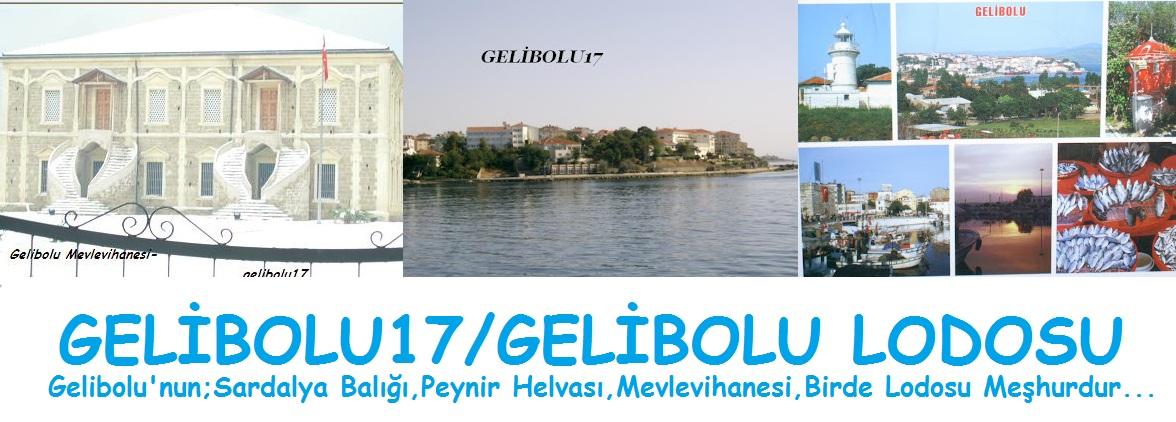 Gelibolu17/Gelibolulodosu