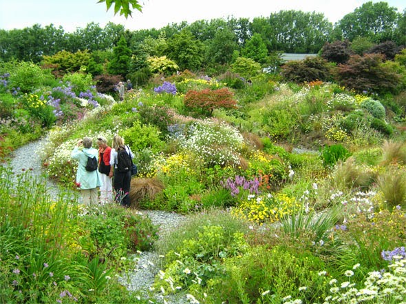 The colourful garden at Wildside, Devon