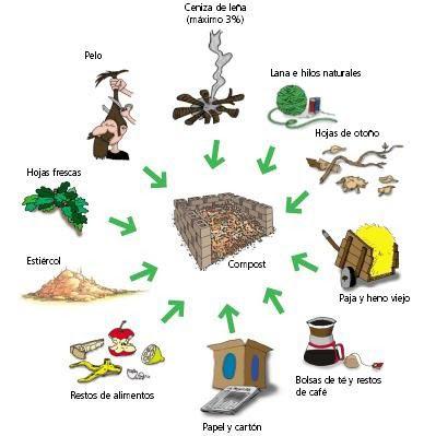 Los indicios de la presencia de las lombrices en el organismo la lista de los síntomas