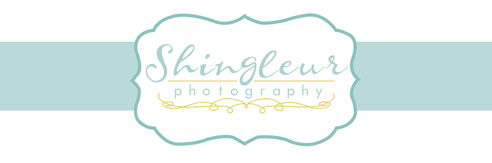 Shingleur Photography