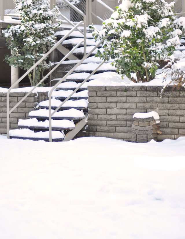 snow covered steps