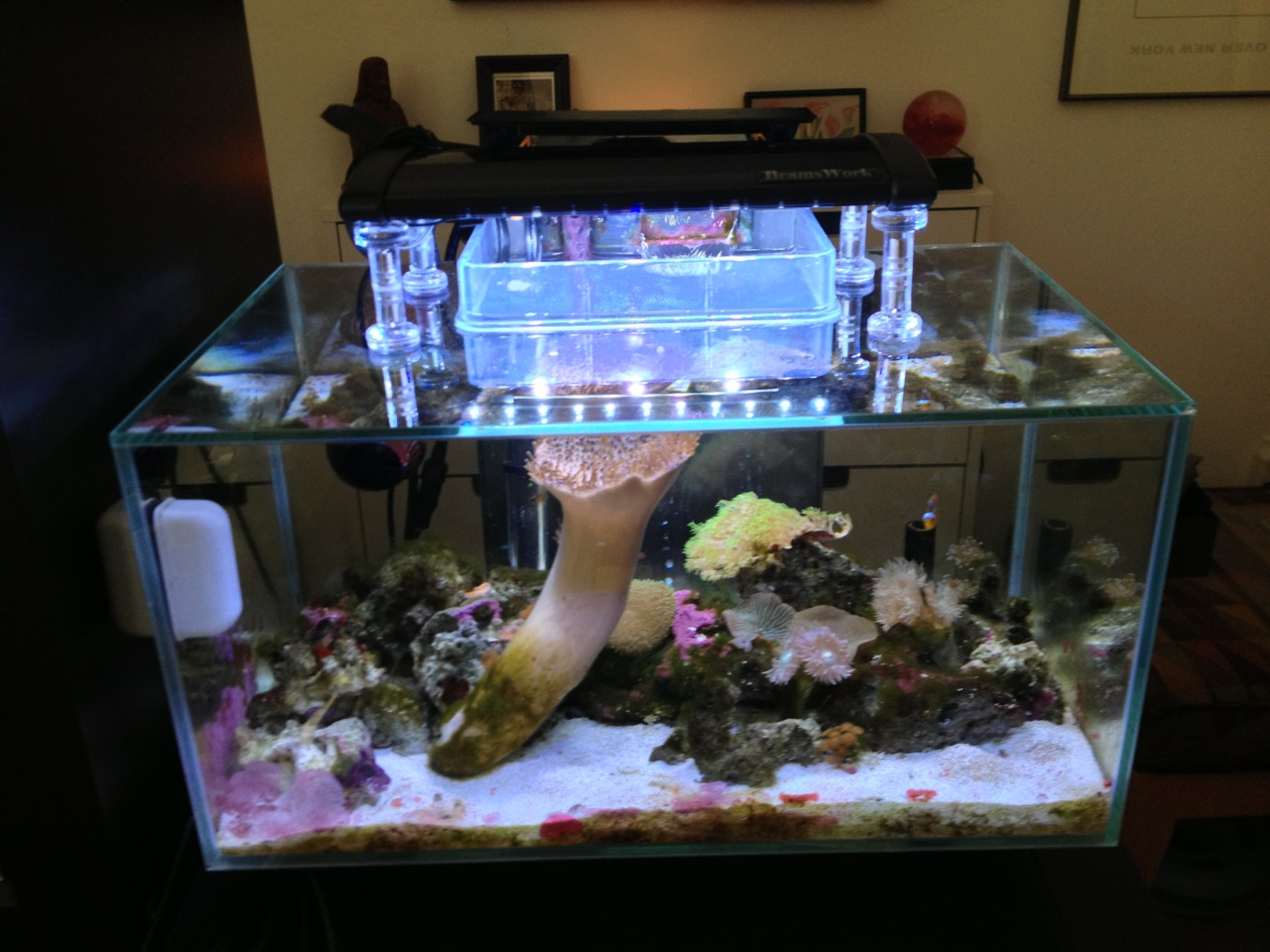 Ikea Grundtal Countertop Lighting ~ aquarium stand ikea  Controversial  ugly IKEA design  Aquarium Sta