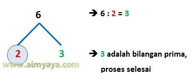 Gambar: Contoh pohon faktor prima dari 6
