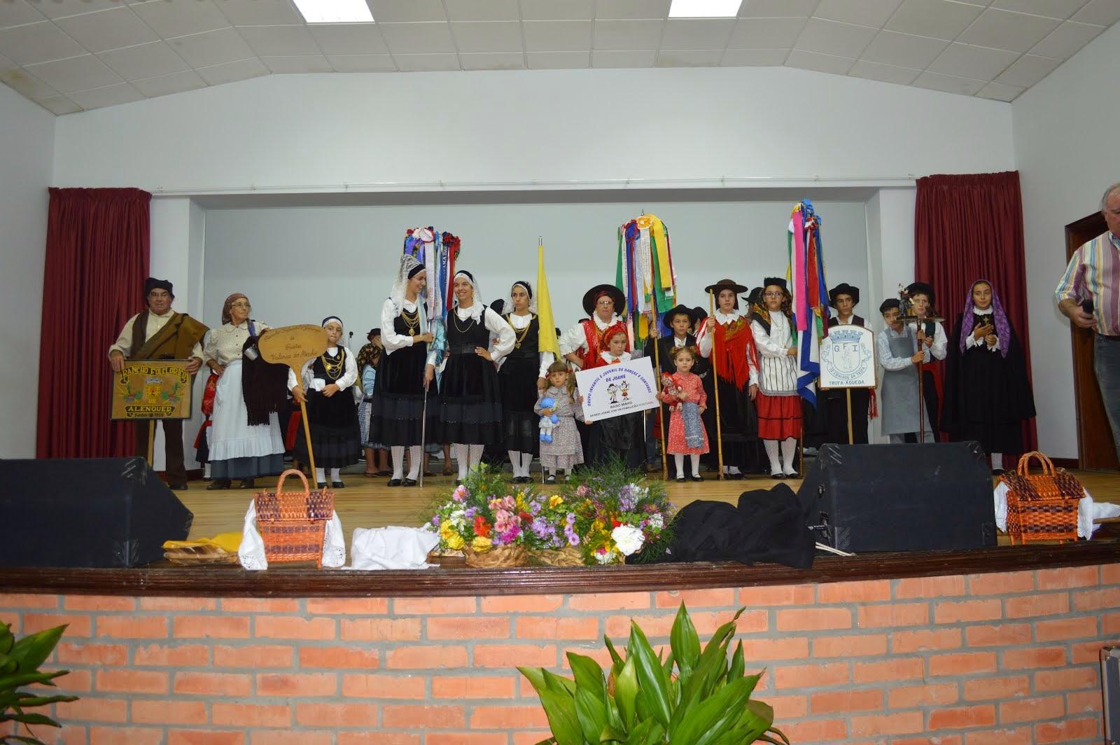 Festival de Folclore na Trofa - Águeda