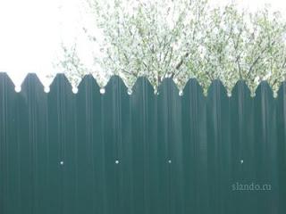 Забор из фигурного профлиста (резная кромка). Фото 10