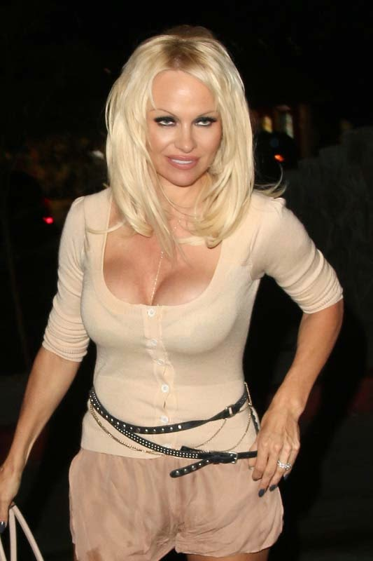pamela anderson latest hot expose stills in los angeles 2014 world actress photos. Black Bedroom Furniture Sets. Home Design Ideas