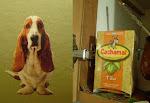 ¿Qué tienen los animales con los logos? O los logos con los animales...